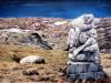 Landschap met beeld