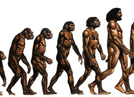 Neanderthaler_mens